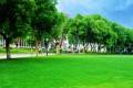 南京特殊教育师范学院有哪些专业及什么专业好